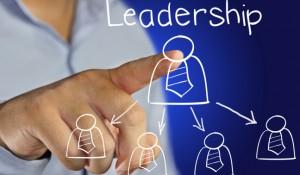 Ledarskapsutbildningae nu
